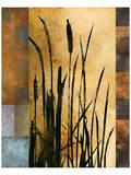 Sawgrass I