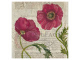 Poppy Pages Square I
