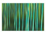 Tree Abstraction I