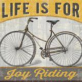 Joy Ride I