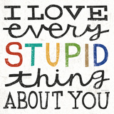 I Love Every Stupid Thing About You