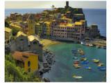 Vernazza Terra Harbour