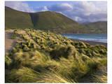 Ross Behy Sand Dunes  Ireland I