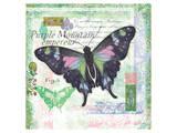 Butterfly Artifact Green