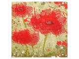 Abstract Red Poppy Trio