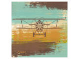 Biplane I