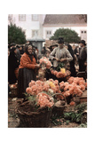A Man and Woman Sell Flowers at a Market