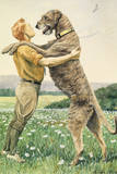 An Irish Wolfhound  on His Hind Legs  Stands Taller Than His Master