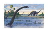 The Diplodocus Could Grow Up to Seventy-Five Feet Long