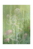 A Painting of Two Species of Comb-Jellies