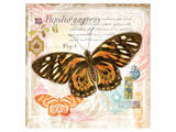 Butterfly Artifact Pink