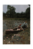 A Couple in a Boat Paddle on a Lily Pond and Collect Flowers
