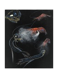 Painting of Shrimp and Fish of the Abyss