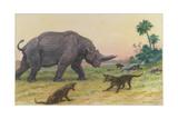 Bony Growths on the Arsinoitherium Protect it Against Hyaenodons