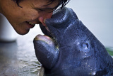 An Orphan Amazonian Manatee Calf Caresses a Marine Mammal Specialist