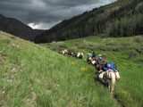 A Train of Horsemen Trek Along Western Mongolia Near Chinese Border