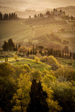Vineyards and Rolling Hills Near San Gimignano at Dawn