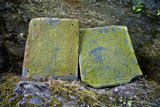 Lichen Encrusted Stone Tablets at a Buddhist Monastery Featuring Engravings of Two Bodhisattvas