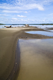Pools of Stagnant Water Along the Shoreline of the Amazon River During the Dry Season Drought