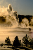 Vapor from Old Faithful Rises More Than Two Hundred Feet Above the Misty Low Fog