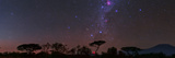 Southern Cross  Milky Way  Large Magellanic Cloud  Carina Nebula  Zodiacal Light and Comet Ison