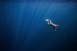 A Bajo Elder of Sampela  Spear Fishing on the Reef