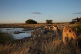 A Camera Trap Captures Researchers Documenting Lions in the African Serengeti