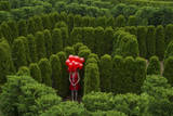 A Young Woman Stands with Balloons in the Garden Maze at Luray  Virginia