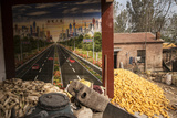 The Corn Harvest in the Village of Shilizha