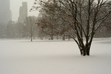 The Sheep Meadow in Central Park During a Blizzard