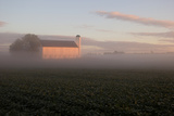 Sunrise Casts a Golden Tint on a Barn and Misty Cornfield