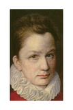 Portrait of a Youth  C1570-75