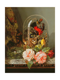 Still Life with Humming Bird in a Glass Dome