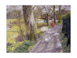 The Path by the Mill Pond  1900