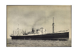 Dampfer MV Dalerdijk  Holland America Line