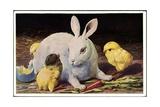Glückwunsch Ostern  Osterhase Mit Küken