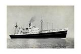 Dampfer SS Diemerdyk  Holland America Line