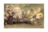 Glückwunsch Ostern  Küken Mit Osterei  Gänseblümchen