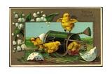 Präge Glückwunsch Ostern  Küken Mit Gießkanne
