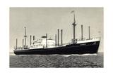 Dampfer MS Sloterdyk  Holland America Line
