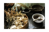 Apothecary's  Ancient Herbalism