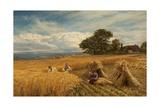 A Surrey Cornfield  1864