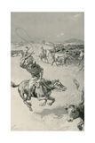 Cattle-Mustering in Queensland