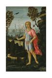 Saint John the Baptist  C1480