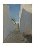 A Moroccan Street Scene  1879-1880