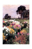 A Display of Flowers  1903