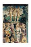 Allegory of April: Triumph of Venus  1466 - 1470