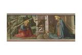 The Nativity  C1445