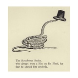 The Scroobious Snake