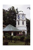 The Clock Tower in the Botanical Garden